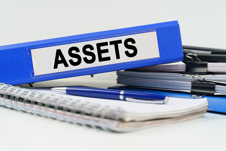 Blue Assets Folder